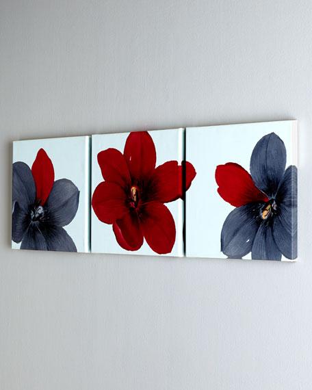 Trio of Tulipia Prints