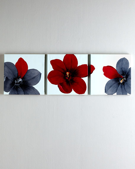 Trio of Tulipia Prints