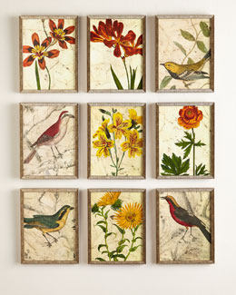 Nine Bird & Flower Prints
