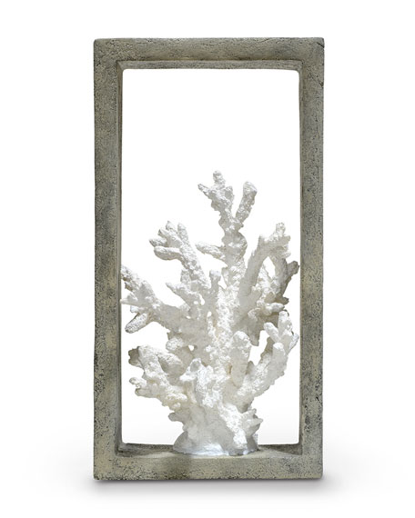 Finger Coral Shadowbox