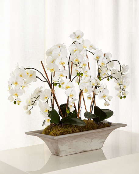 John-Richard Collection Armature Orchids Faux-Floral Arrangement