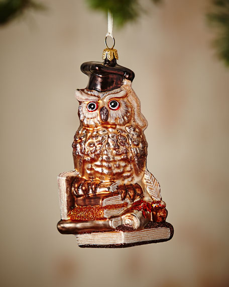 Professor Owl Ornament