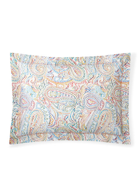 Cayden Paisley Full/Queen Comforter Set