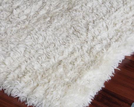 Wolkan Shag Rug, 6' x 9'