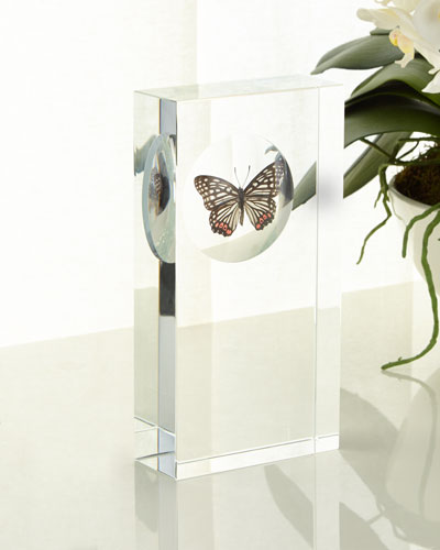 Butterfly Encased in Crystal