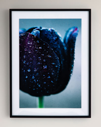 Waterdrops Photography Print on Photo Paper