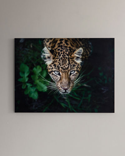 Hide & Seek  Photography Print Handmade HD Metal & Acrylic Art