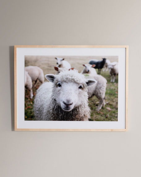 """Hi There"" Photography Print Framed Handmade  Art"