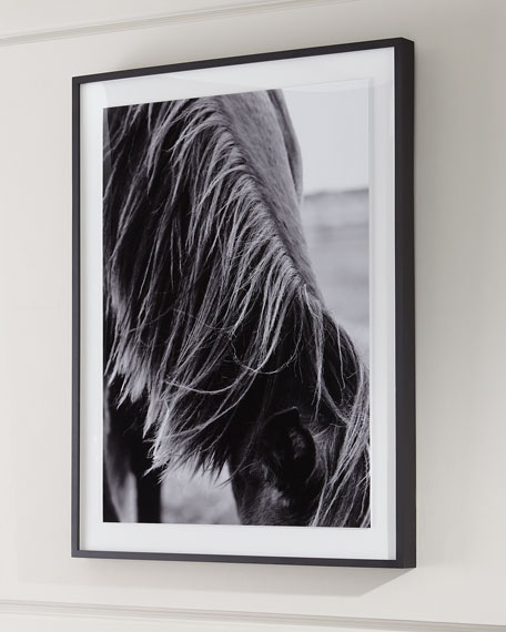 """Mane II"" Photography Print on Photo Paper Framed Art"