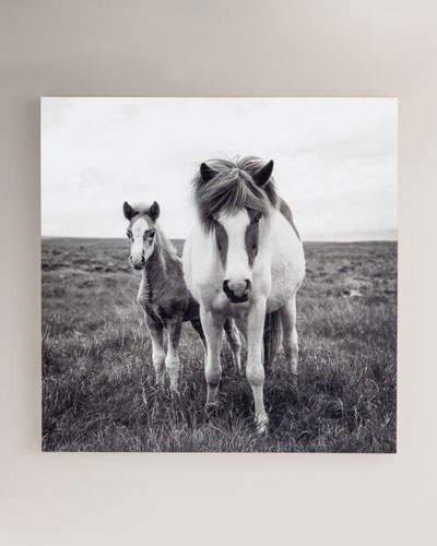 The Stare Photography Print on Maple Box Framed Wall Art