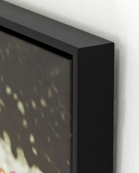"""On the Edge"" Photography Print on Canvas Framed Wall Art"