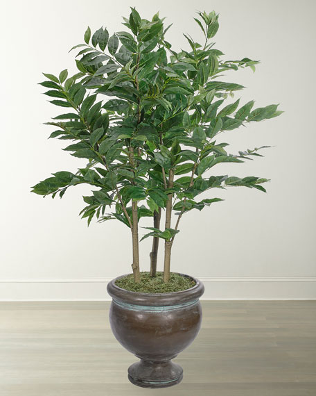 Nandina Tree in Bronze Pedestal Urn