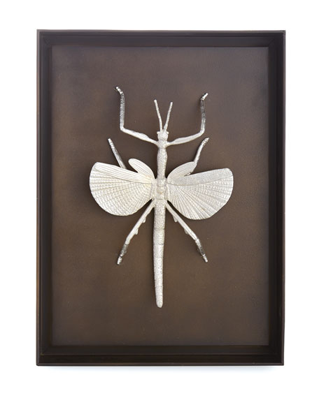 Flying Walking Stick Shadow Box