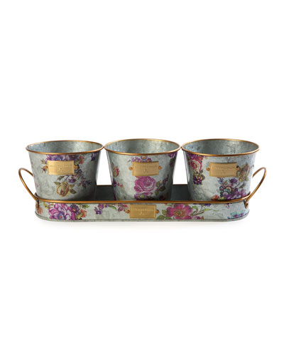 Flower Market Herb Pots with Tray  Set of 3
