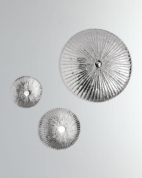 Global Views Large Sea Urchin Wall Sculpture