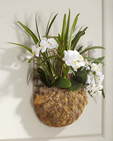 Hanging White Orchids in Basket