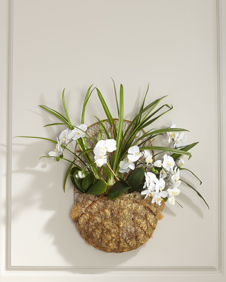 John-Richard Collection Hanging White Orchids in Basket