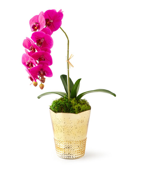 Orchids in Gold Mercury Containers
