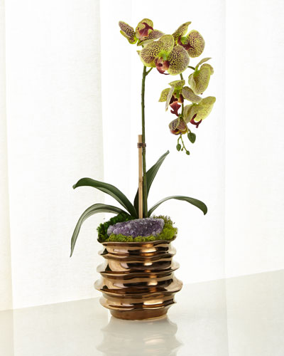 Green Orchid with Amethyst in Contemporary Pot