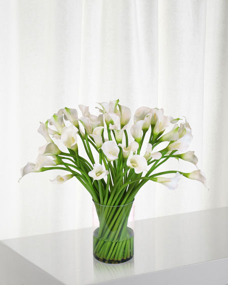 Calla Lily in Clear Cylinder Vase