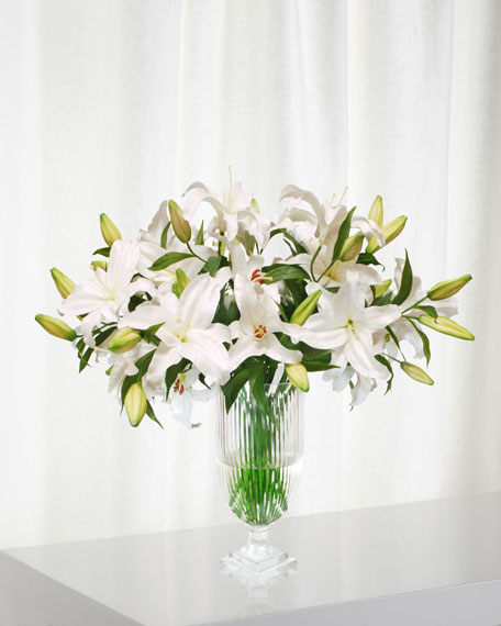Lily Casablanca in Stripe Cut Vase