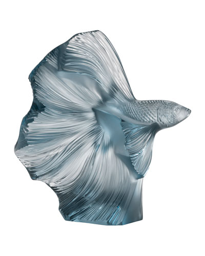 Fighting Fish Sculpture  Persepolis Blue
