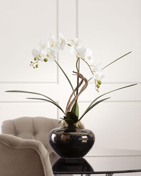 Artistic Orchid Arrangement