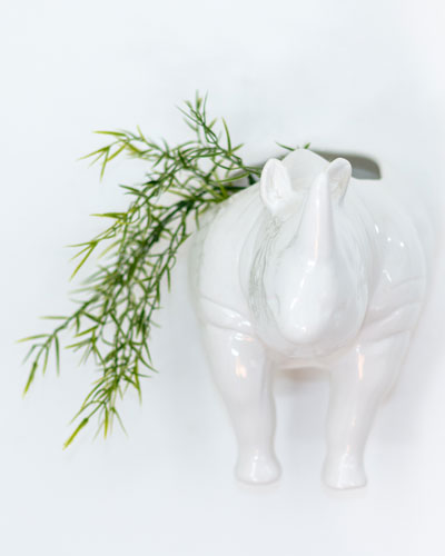 Rhino Head Wall Planter
