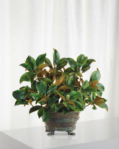 Magnolia Foliage Centerpiece