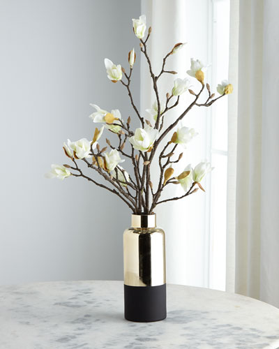 Japanese Magnolias in Black and Gold Container