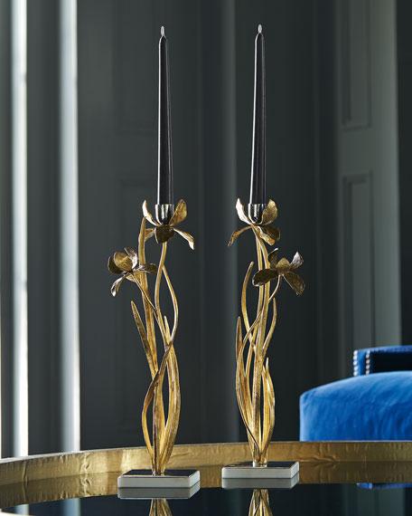 Black Iris Candleholders, Set of 2