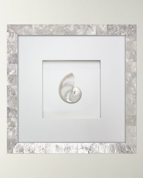 Pearl Nautilus Shell in Capiz Shell Frame