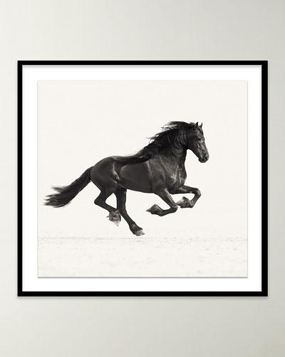 War Horse Photo by Carys Jones