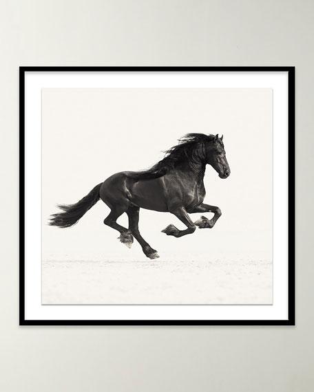 """""""War Horse"""" Photo by Carys Jones"""