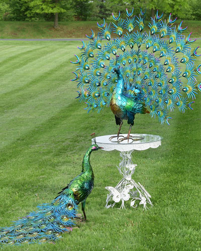 Large Colorful Peacocks  Set of 2