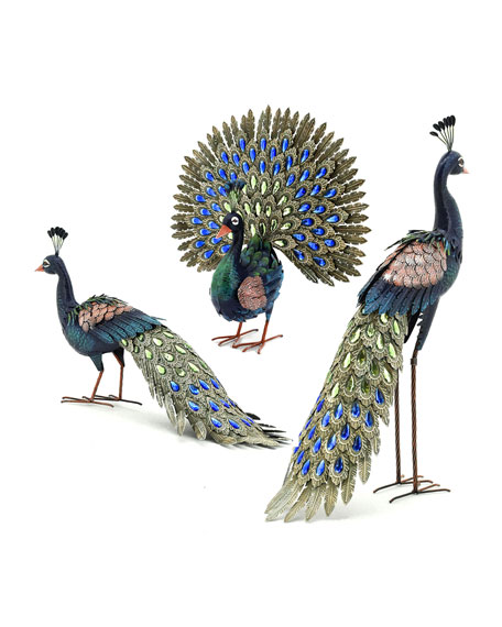 Assorted Peacocks, Set of 3