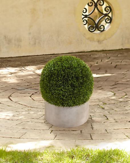 Boxwood Ball in Terra Cotta Bowl