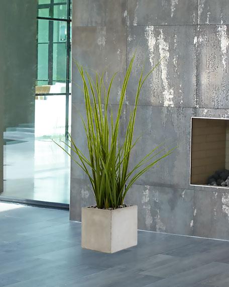 NDI Green Grass in Concrete Cube