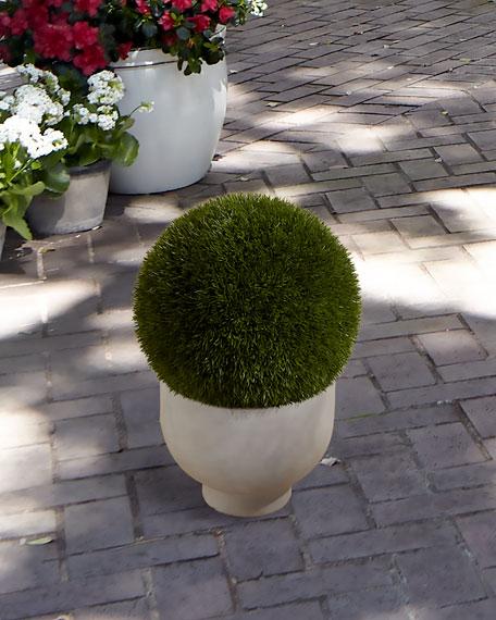 NDI Grass Ball in Terra Cotta Bowl