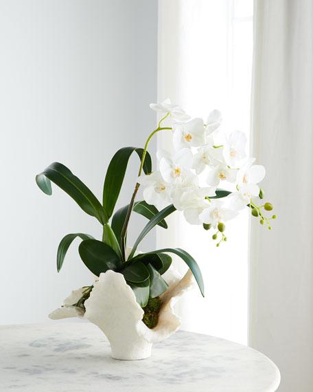 John-Richard Collection Sea Coral Orchids Arrangement