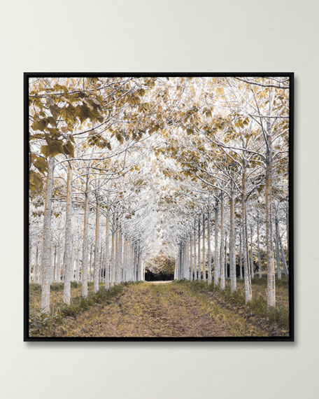 """""""White Gold"""" Giclee Canvas Art by Frank"""