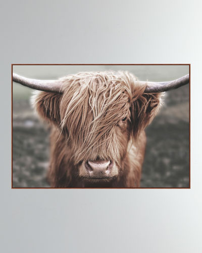 'Highlands Bovine' Wall Art