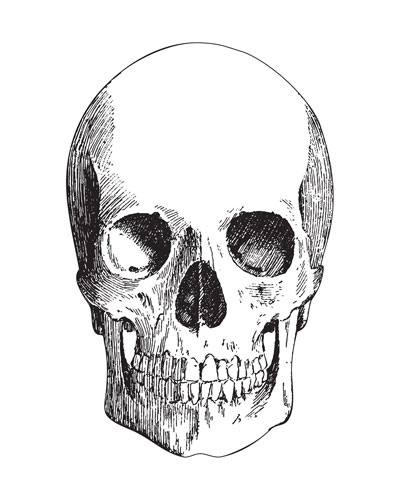 Set of 12 Skull Paper Placemat