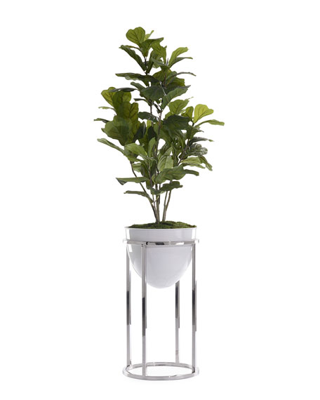 Green Fiddle Leaf Fig with Silver Stand
