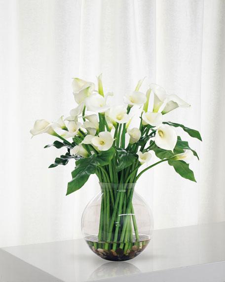 Calla Lily in Round Vase