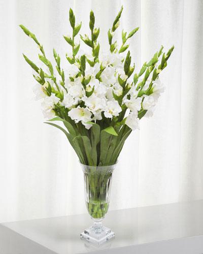 Gladiolus in Cut Vase