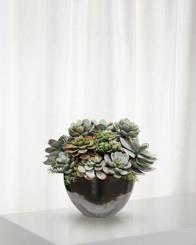 Mix Succulent in Ceramic Bowl