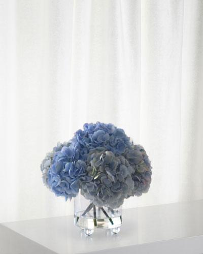 Hydrangea in Cylinder Glass Vase