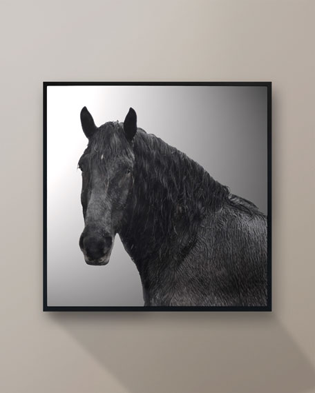 """Horse Riggs A Farm5"" Giclee by Chris Dunker"