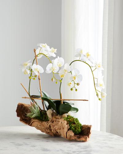 Organic Woody Orchids Arrangement